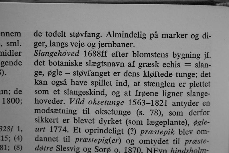 Hvorfor hedder det middelalderen eb side 6